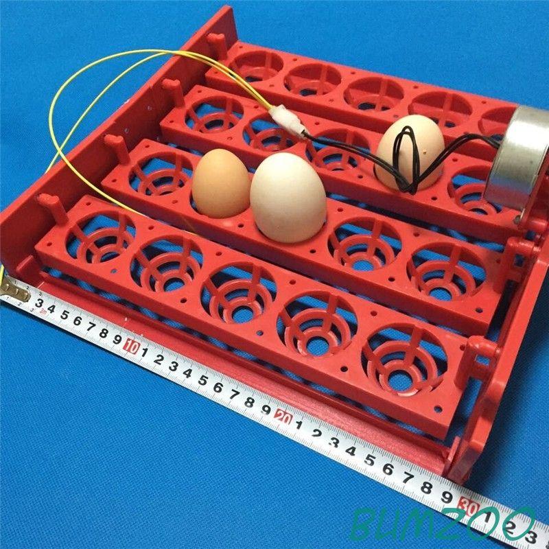 Лотки для яиц в инкубатор